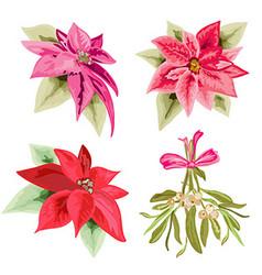 poinsettias and mistletoe set vector image