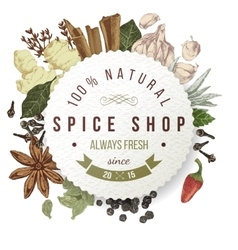 Spice shop paper emblem with different spices vector