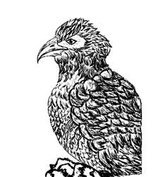 Eagle Sketch2 vector