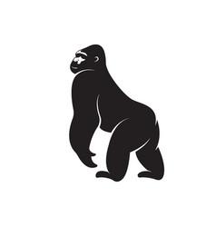 gorilla monkey design on white background easy vector image
