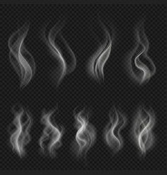 grey hot smoke clouds white transparent steam vector image