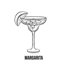 margarita cocktail monochrome vector image
