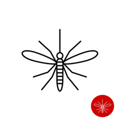 Mosquito line icon top view insect vector