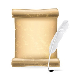 white feather and old scroll vector image vector image