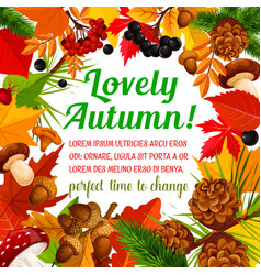 autumn poster template with frame of fall nature vector image