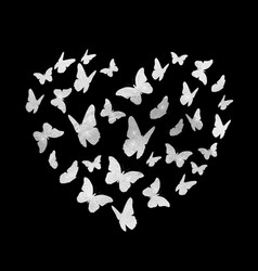 beautiful butterfly sitver heart silhouette vector image