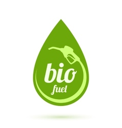 Bio fuel icon vector image
