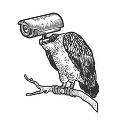 griffin vulture surveillance camera head sketch vector image
