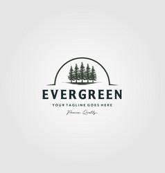 Pine trees logo evergreen vintage spruce cedar vector