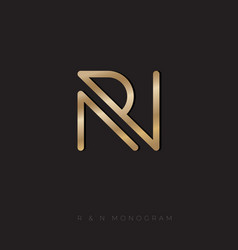 r and n monogram linear gold letters vector image