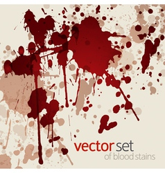 Blood stains vector image vector image