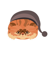 persian cat in hat with ball isolated on white vector image vector image