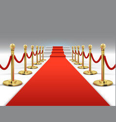 hollywood luxury and elegant red carpet with vector image