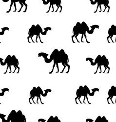 Camel seamless pattern vector