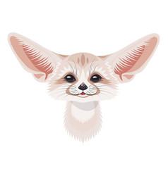 cartoon fennec fox portrait on white vector image