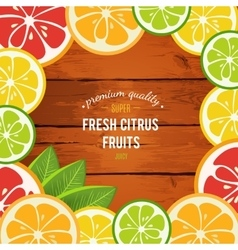 Grapefruit lime lemon and orange with mint vector image