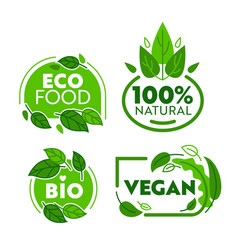 green eco vegetarian organic food sticker set vector image