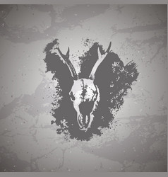 Hand drawn skull roe deer and grunge elements on vector