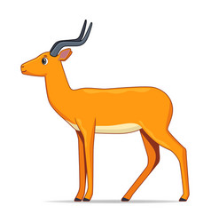 impala antelope animal standing on a white vector image