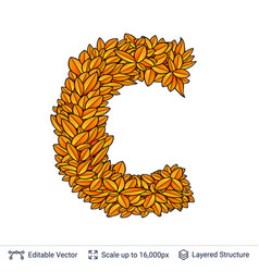 Letter c sign of autumn leaves vector