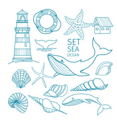 Set marine objects - shells whale tail vector