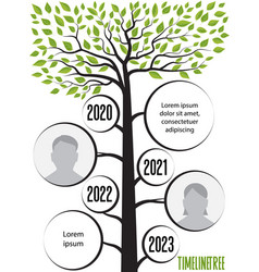 timeline trees with leaves vector image