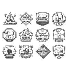 Wild forest and african animals hunt club icons vector
