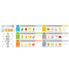 balance diet infographic diagram poster water vector image