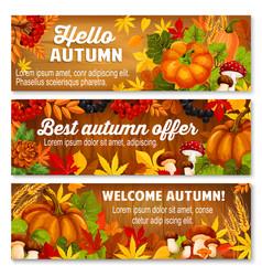 autumn leaf on wooden background banner set vector image vector image