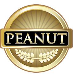 peanut gold icon vector image