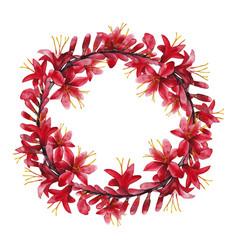 watercolor crocosmia wreath vector image vector image