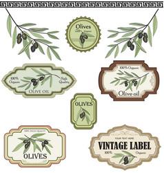 vintage olive labels set organic food colored vector image vector image