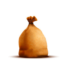bright old brown bag with texture isolated on vector image