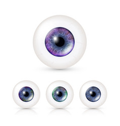 Human eyeballs set with big irises in colour vector