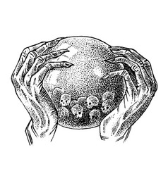 magic crystal ball in hands a fortune vector image