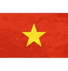 True proportions Vietnam flag with texture vector
