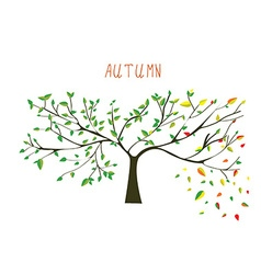 Autumn is coning tree vector