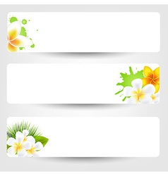 Banners With Flowers Frangipani vector image
