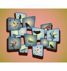 Birds on a peachy background vector