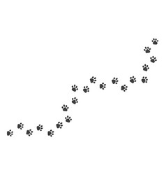 cat paw footprints paths on white background vector image