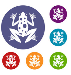 frog icons set vector image