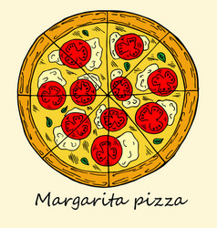 hand drawn of pizza vector image