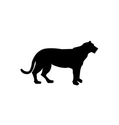 tiger silhouette black pattern side view vector image