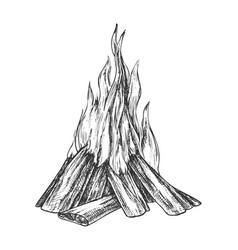 traditional burning bonfire monochrome vector image