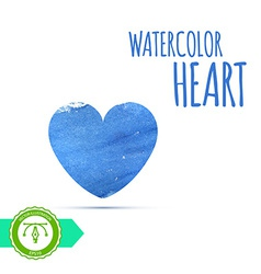 Watercolor paint heart vector image