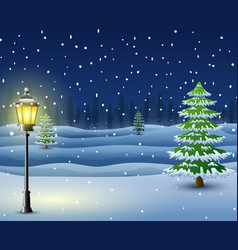 winter night background with pine trees and street vector image