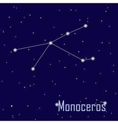 The constellation Monoceros star in the night sky vector image vector image
