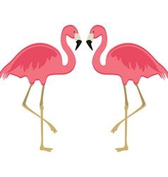 Two pink flamingo vector image