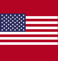 american national united states flag vector image