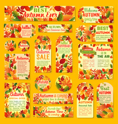 autumn sale tag and label set with fall leaf vector image
